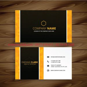 Mẫu Card Visit đẹp – C03