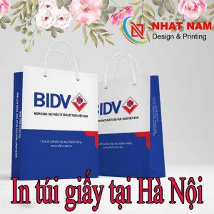 In Túi Giấy Tại Hà Nội – In Túi Giấy Giá Siêu Rẻ Uy Tín Chất Lượng.