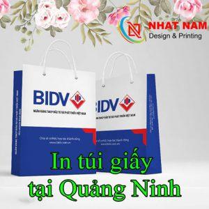 In Túi Giấy Tại Quảng Ninh